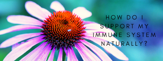 3 Ways to Support the Natural Immune System